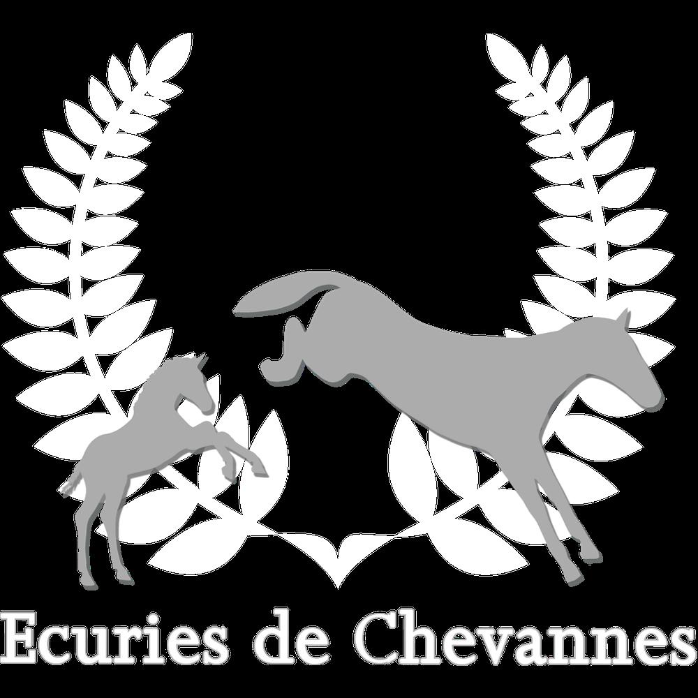 Cher Epoux - Etalon Selle Français
